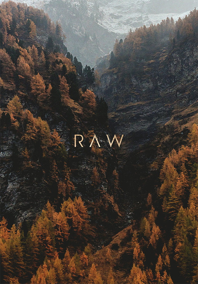 RAW 2nd Edition