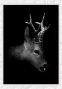Roebuck-BLACK-frame