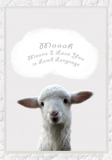 little.lamb.frame